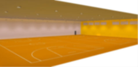 Basketball indoor sports lighing render Dialux