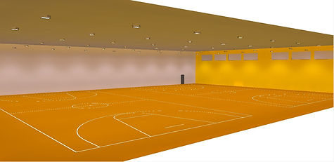 Basketball indoor sports lighing render Dialux