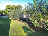 st lucia lodge garden area