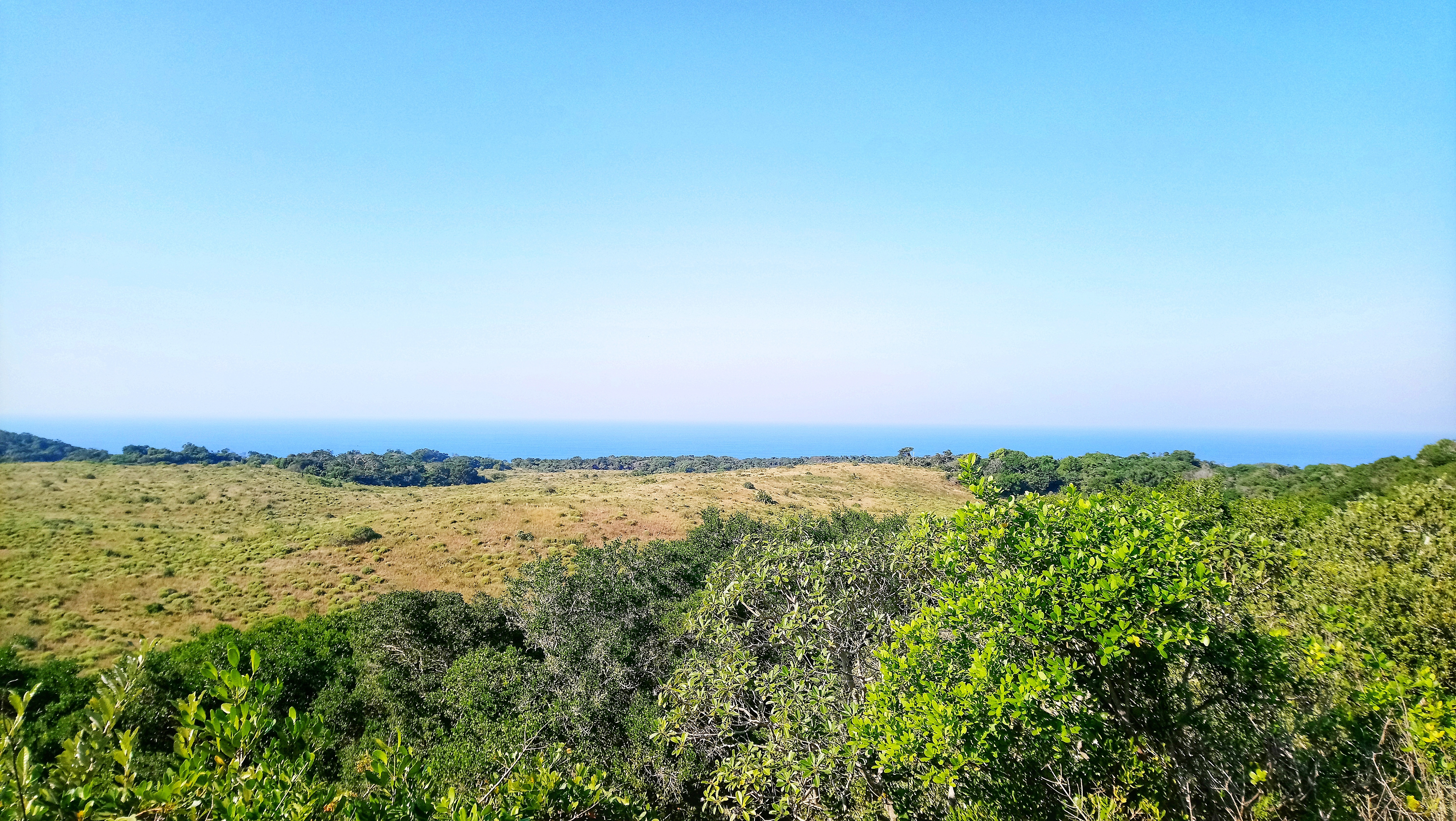 St Lucia Lodge isimangaliso wetland