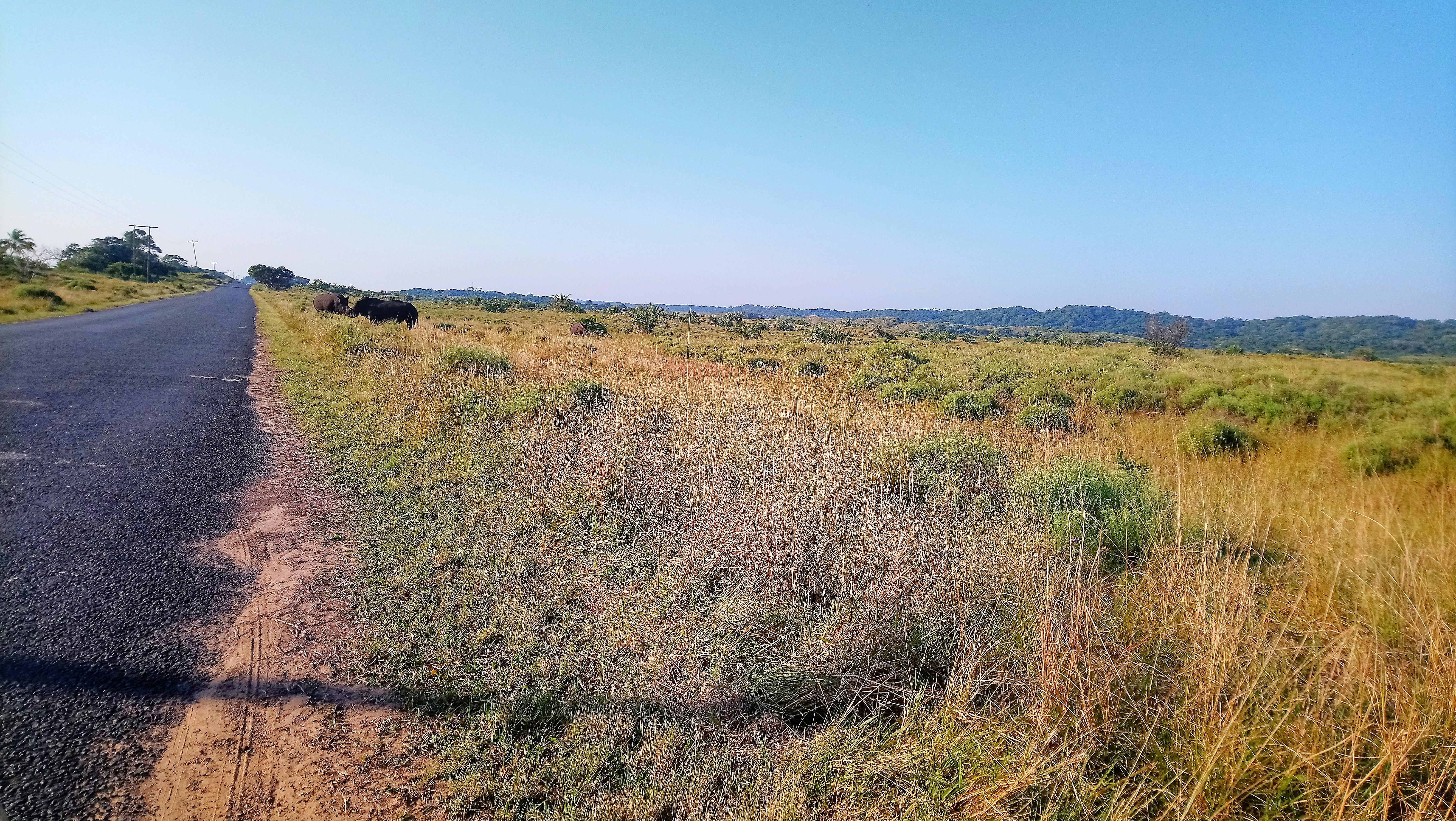 st lucia lodge, isimangaliso wetland