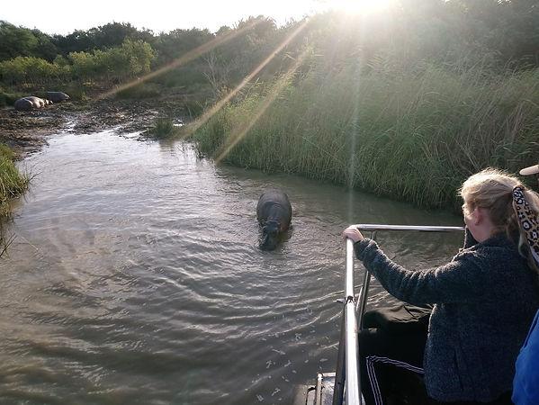 St Lucia Lodge Estuary Boat Cruise Hippo & Croc Safari