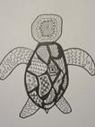 Turtle_Sample_b09.jpg