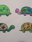 Turtle_Sample_b03.jpg
