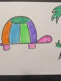 Turtle_Sample_b01.JPG