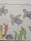 Turtle_Sample_b04.jpg