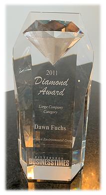 2011 Diamond Award.png