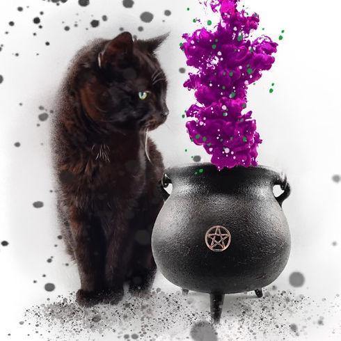 Cat%2520and%2520Cauldron%2520Logo%25202_edited_edited.jpg