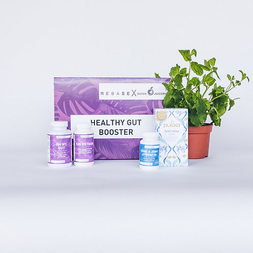 Healthy Gut Booster