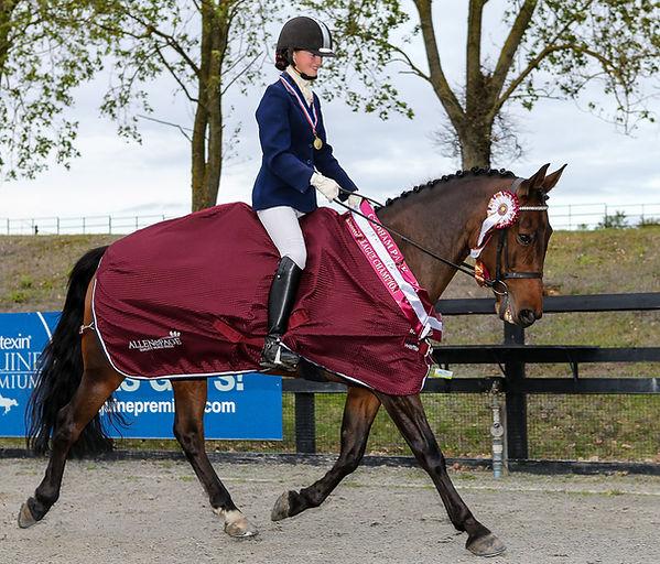 Codham Park Equestrian dressage league winner sponsored by Allen & Page Horse Feeds