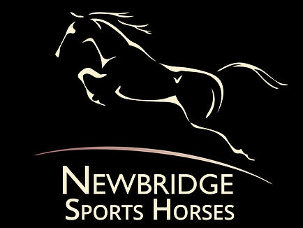 Newbridge Sports Horses