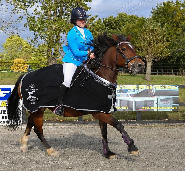 Codham Park Equestrian DKS Horse Transport League Winner