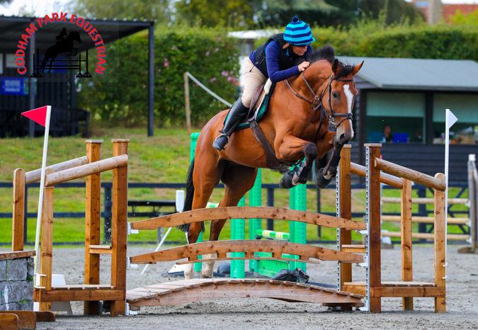 Codham Park Equestrian Arena Eventing