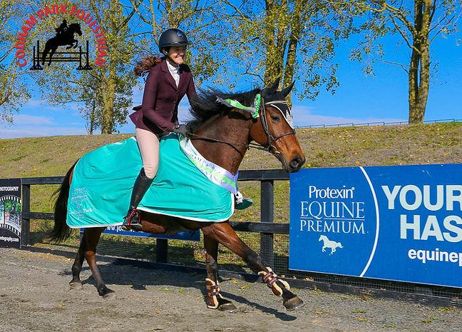 Codham Park Equestrian British Showjumping