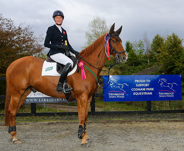 Codham Park Equestrian Newbridge Sports Horses Sponsored Class Winner