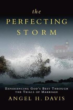 theperfectingstorm-book-angelhdavis.jpg