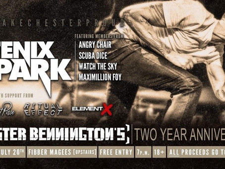 A Preview Of The Dublin Tribute Show - Exclusive Interview With Fenix Park