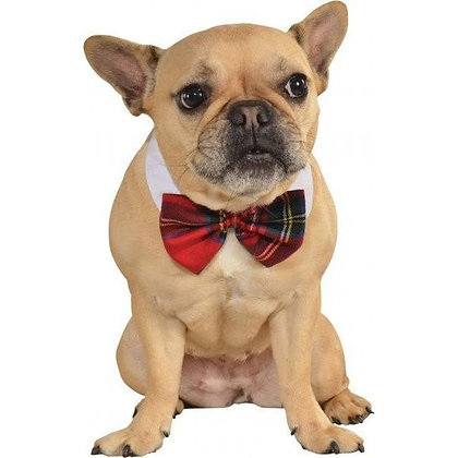 Red Plaid Pet Bowtie