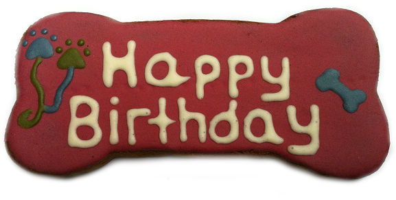 6 inch Birthday Dog Bone Treat (Qty 6)