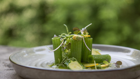 The Incredibly Versatile Summer Squash