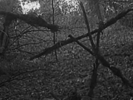 From Blair Witch to Blair Witch: The rise and fall of the found footage subgenre.