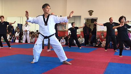 Tai Chi Grand Master Ko stance