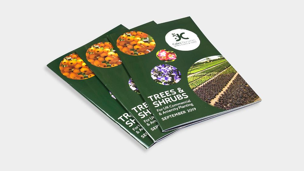 Printed Saddle-Stitched Brochure