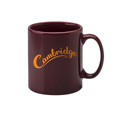 Promotional_Mug-removebg-preview.png