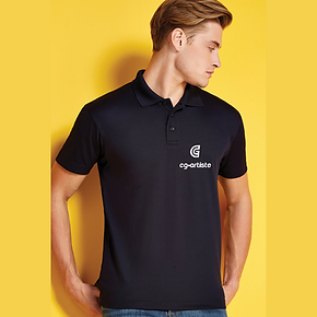 Branded polo shirt.png
