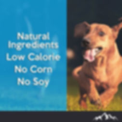 Natural Ingredients, Low Calorie, No Corn, No Soy