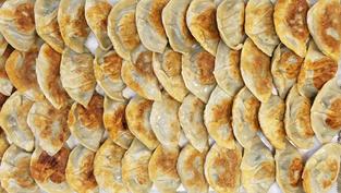 Fried Mandoo