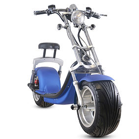 electric-scooter1000w-strong-electric-sc