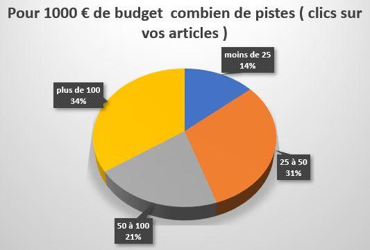 Pour 1000 € de budget  combien de pistes ( clics sur vos articles)