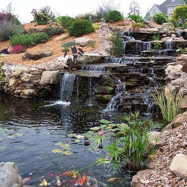 Water Feature North