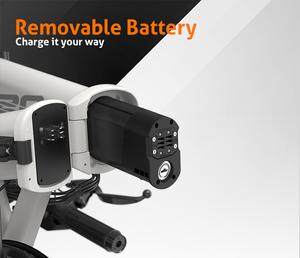 HIMO Z20, Indiegogo, E-Bike, Affordable, Electric Bike, removable battery