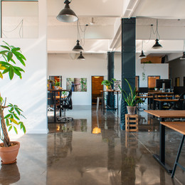 Ecosia Office.jpg