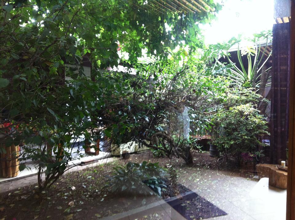 Jornada de Experiências - Jardim