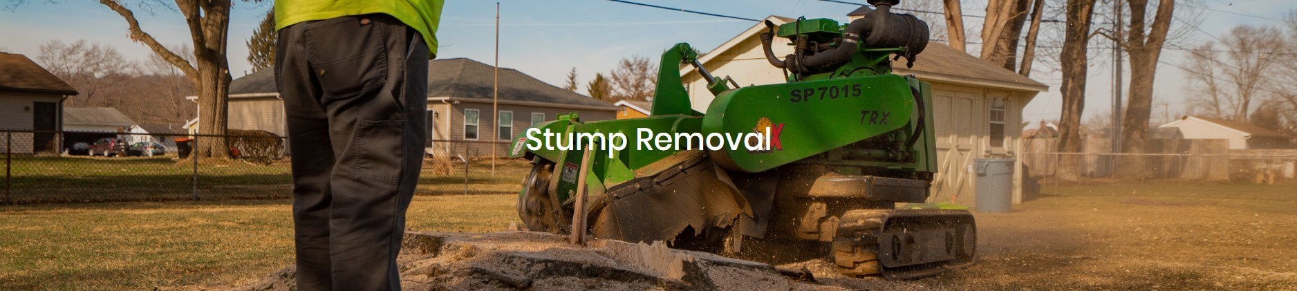 Stump Removal.jpg