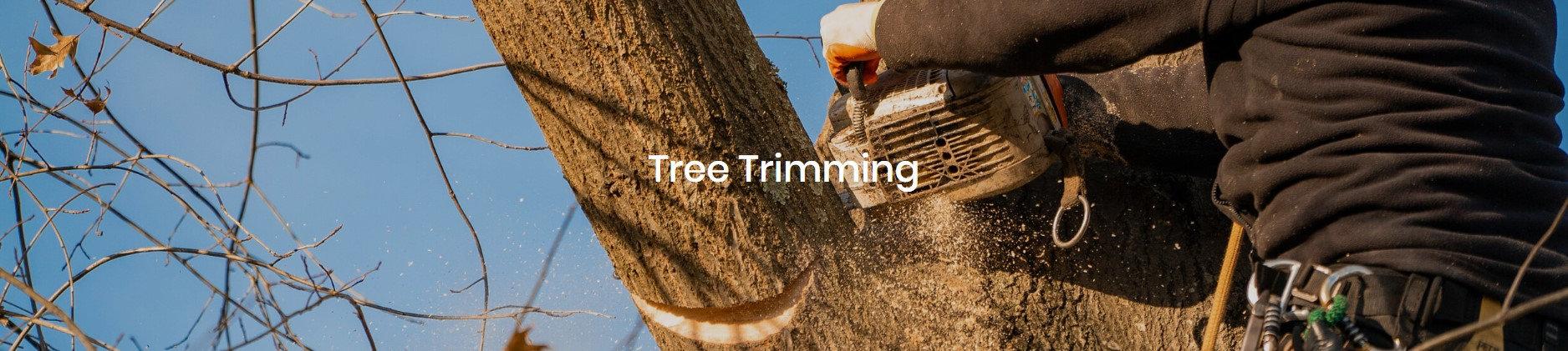 tree triming.jpg