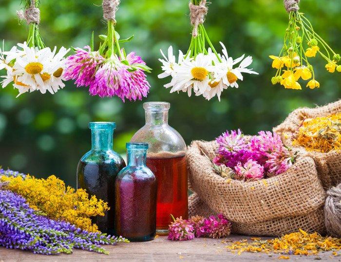 Terapia con esencias florales de Bach