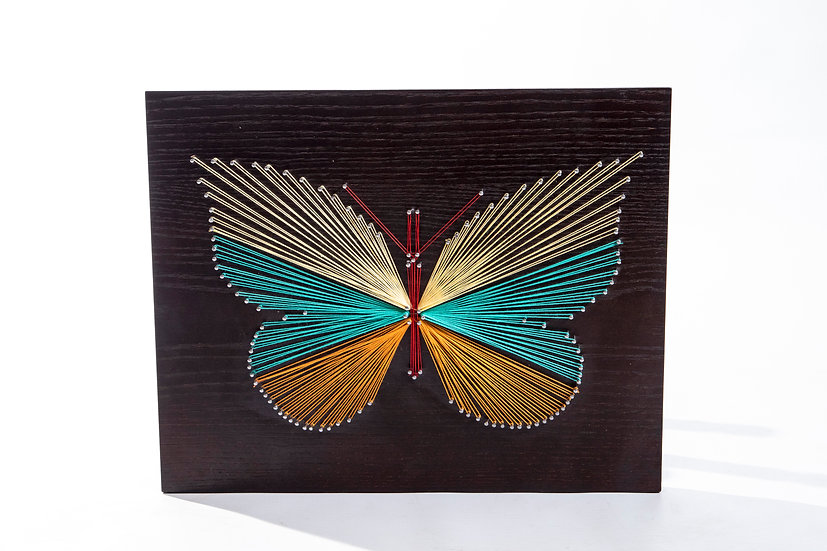 String- Butterfly