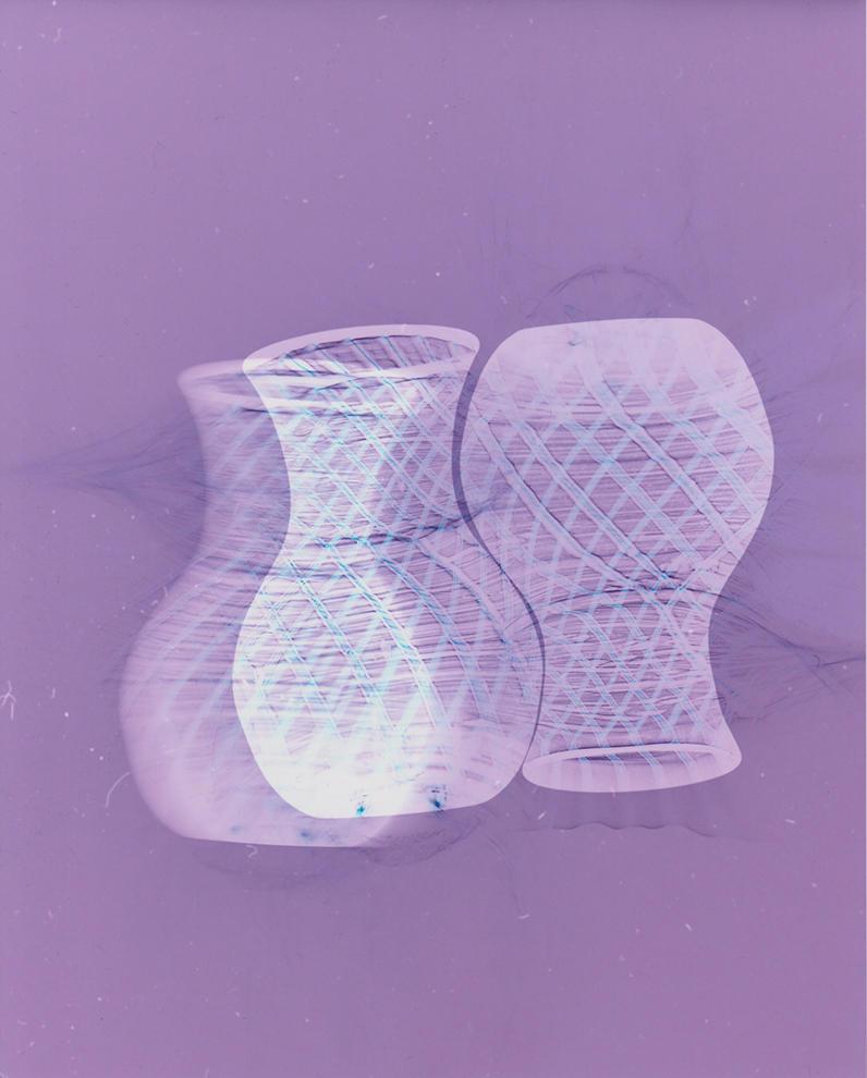 """Habitat. Unique colour photogram on lustre paper. 10"""" x 12"""". 2020."""