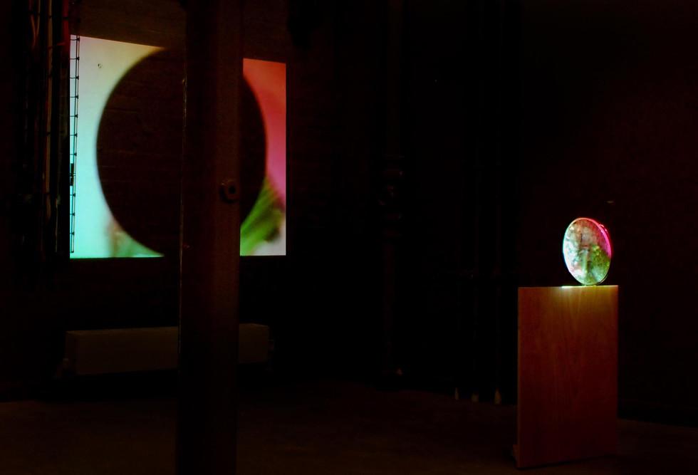 One Man Show. Video installation. Chelsea College of Art & Design, London (2007)