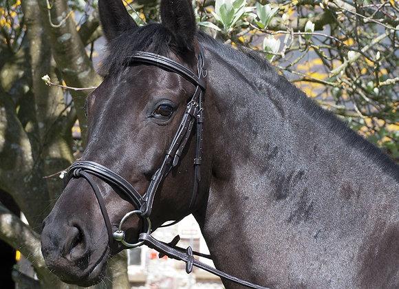 Rhinegold 'Elegance' German Leather Bridle With Flash Noseband