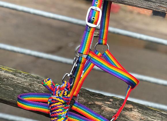 Rainbow Head Collar & Rope Set