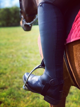 HY Equestrian Chaps