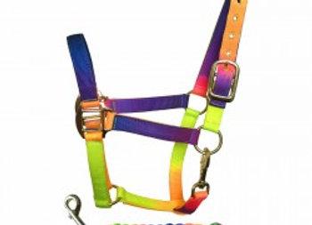 Tutti-Frutti Nylon Head Collar & Lead Rope Set