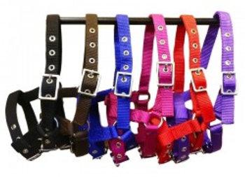 Nylon Foal Head Collars