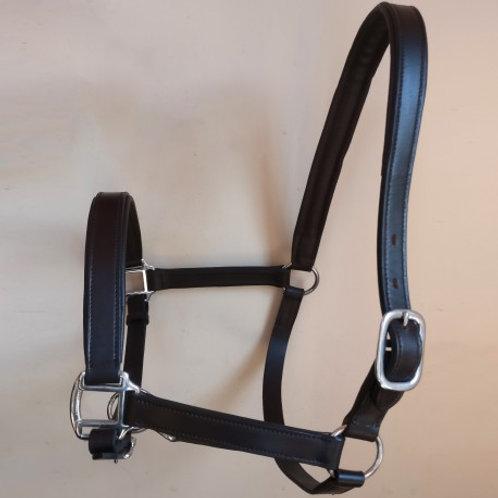 Sheldon Classic Padded Leather Head Collar