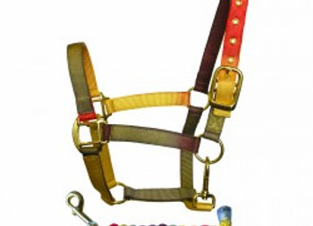 Earth Tones Nylon Head Collar & Lead rope set